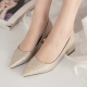 Women's Glitter Beige Pointed Toe Metallic Med Heel Pumps