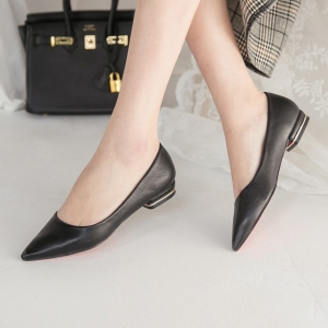 Pointed Toe Gold Line Block Low Heel Pumps